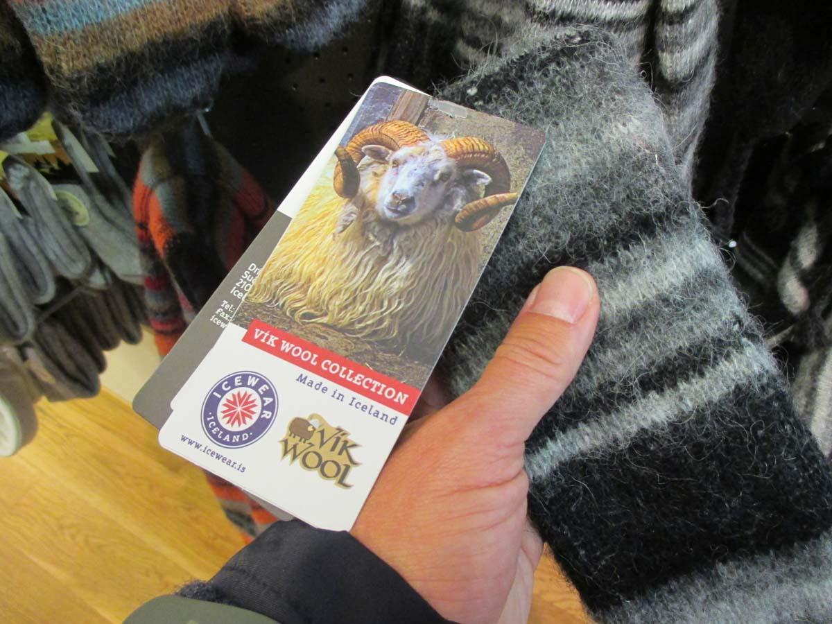Kallt och kalt på Island. Till och med fåren har strumpor.