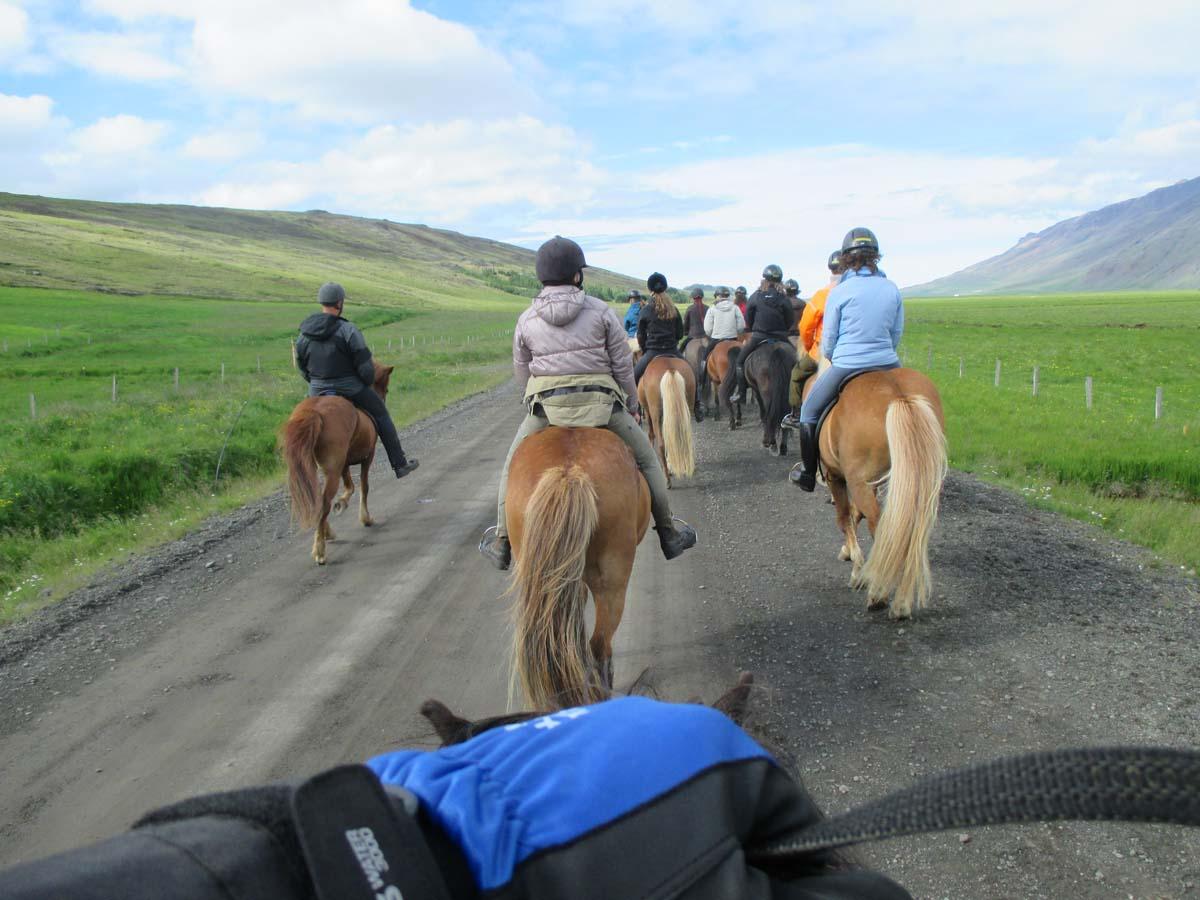 Upp på hästen och in i ledet