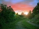 Sommarkväll i Hålviken