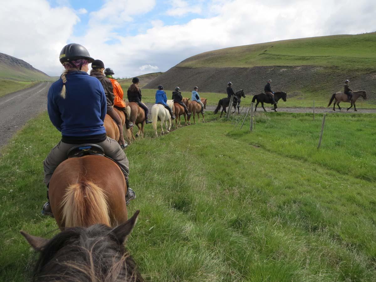 Första dagen på hästarna