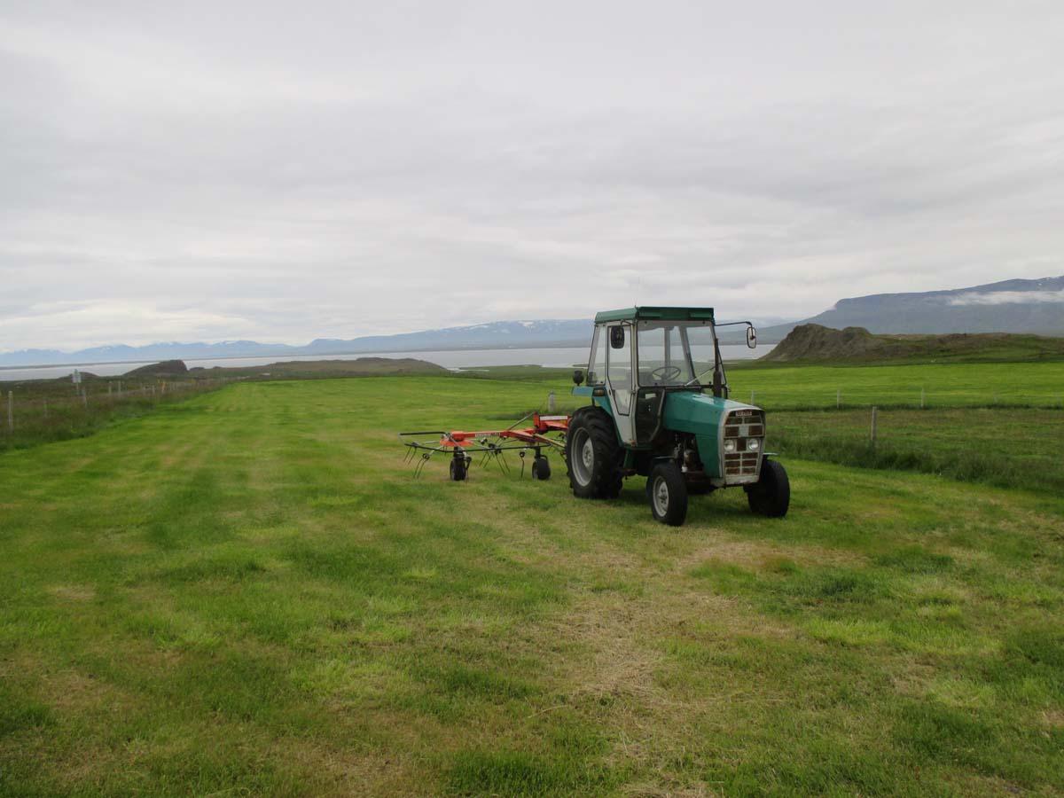 En traktor, mycket landskap