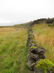 Det är aldrig svårt att hitta byggmaterial på ett lavafält