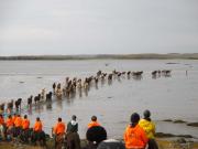Första mötet med havsbotten när tidvattnet drar ut