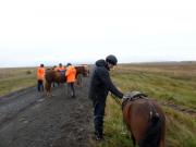 Mats och hästen Þróttur. Det är lättare att sitta upp när hästen står i diket !?