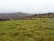 Öppna landskap på isländska. Gräs och lavafält.