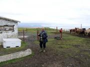 Vi lämnar hästarna vid gården Traðir