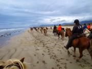 Gul sand på havsstranden Löngufjörur på Snæfellsneshalvön