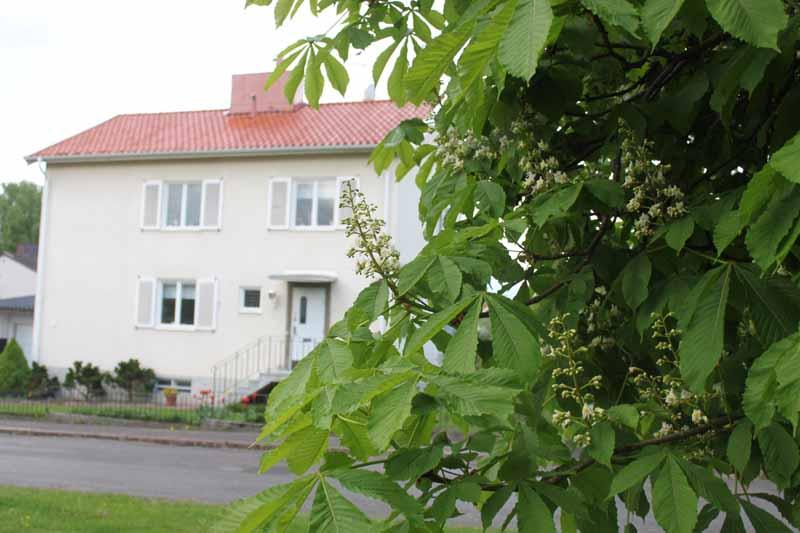 Vår på Lindgatan