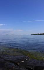 Sommar i Hålviken