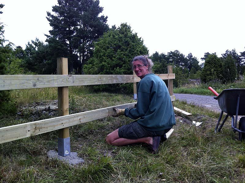 staket2012_02