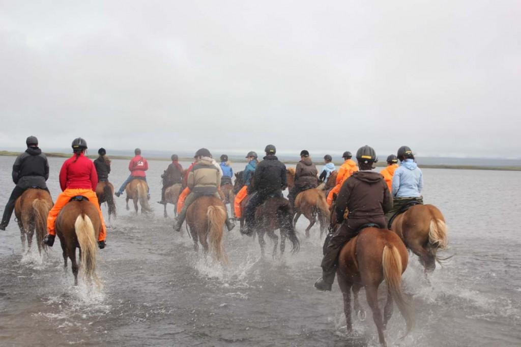 Island2013-TrailOfHope_24